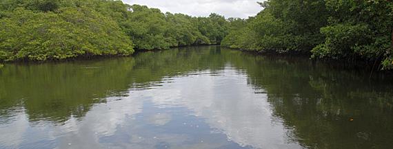Transamérica Ilha de Comandatuba