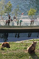 Parque dos Ursos, Berna
